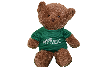 Large Teddy Bear - $24.00